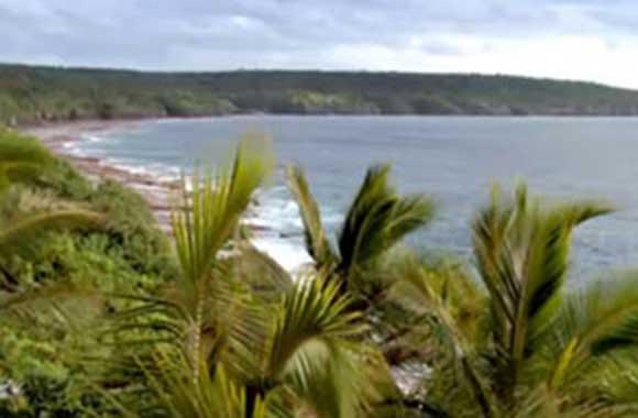 Niue Islands Records Preservation